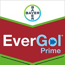 EverGol Prime