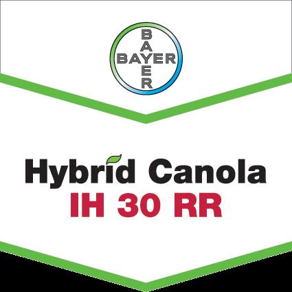 Hybrid Canola IH 30 RR brand tag