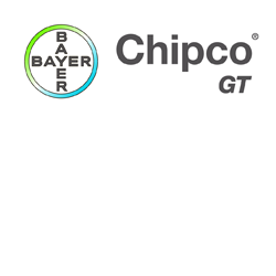 Chipco GT logo