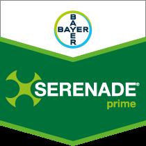 Serenade Prime brand tag
