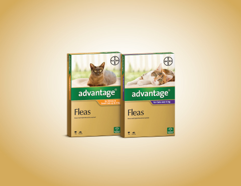 Advantage: flea treatment for cats product image