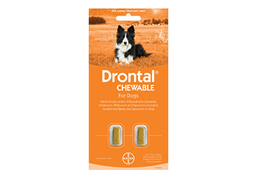 Drontal Chewable for Dogs