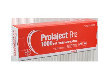 Prolaject B12 1000