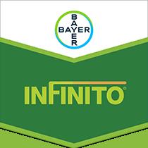 Infinito Brandtag