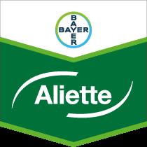 Aliette brand tag