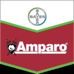Amparo Product Logo