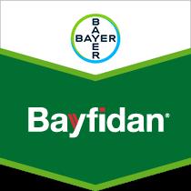 Bayfidan brand tag