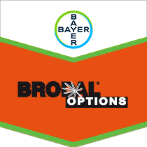 Brodal Options brand tag
