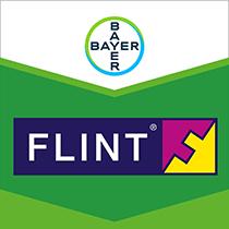 Flint brand tag