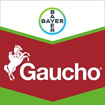 Gaucho brand tag