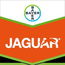 Jaguar brand tag