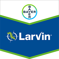 Larvin brand tag