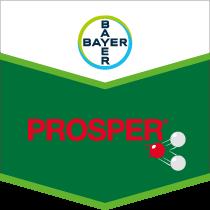 Prosper brand tag