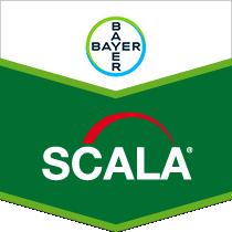 Scala brand tag