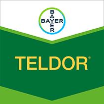 Teldor brand tag