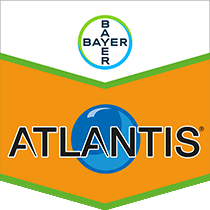 Atlantis OD Product Image