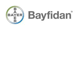 Bayfidan logo