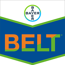 Belt brand tag