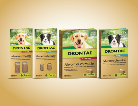 Drontal Chewables Product Image