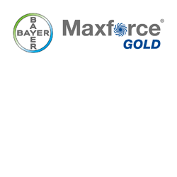 Maxforce Gold logo