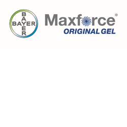 Maxforce Original Gel logo