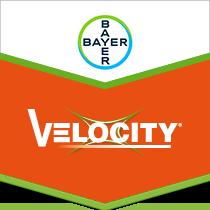 Velocity brand tag