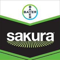 Sakura Brand Tag