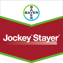 Jockey Stayer Brand Tag