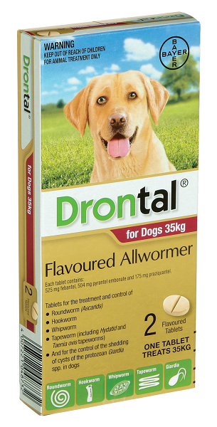 Drontal® Allwormer for Large Dogs