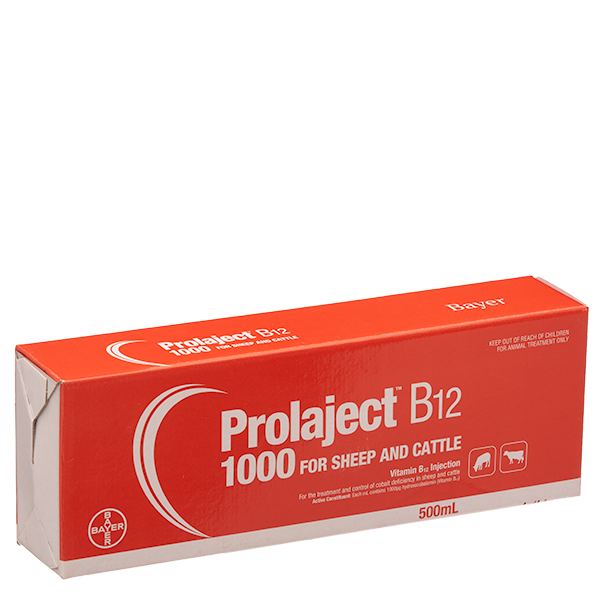 Prolaject® B12 1000